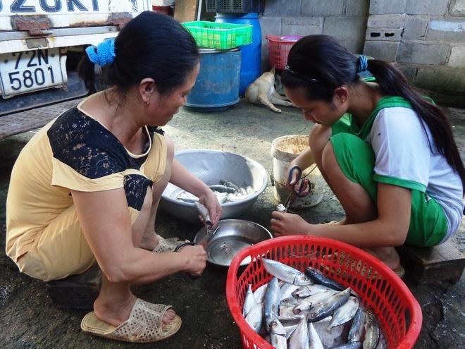 Co hoc tro lam ca va giac mo bac si hinh anh 2 Vân phụ làm cá để 2 giờ khuya dì mang ra chợ bán.