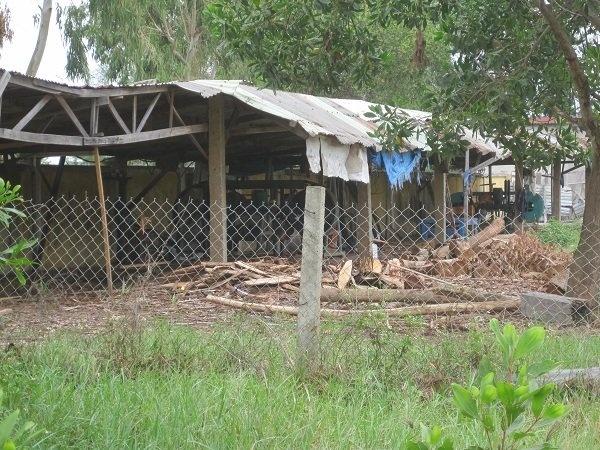 Nhieu truong dong cua vi khong tuyen duoc sinh vien hinh anh 2 Một góc sân trường Trung cấp Xây dựng miền Trung biến thành xưởng cưa từ nhân.