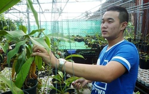Khoi nghiep tu 'cay an thit' hinh anh 1 Lê Minh Tuấn bên vườn ươm cây.