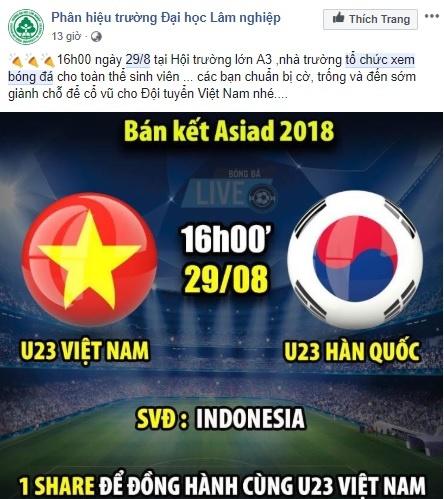 Co giao nhan hoc sinh 'lap dan cau nang' co vu Olympic Viet Nam hinh anh 6