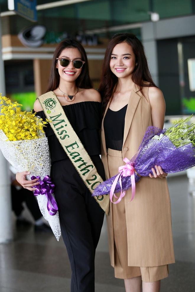 Hoa hau Trai dat 2015 den Viet Nam hinh anh 2
