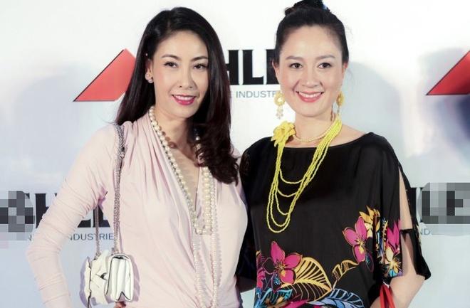 'Ha Kieu Anh rat nghi luc trong vu an Nguyen Gia Thieu' hinh anh 1