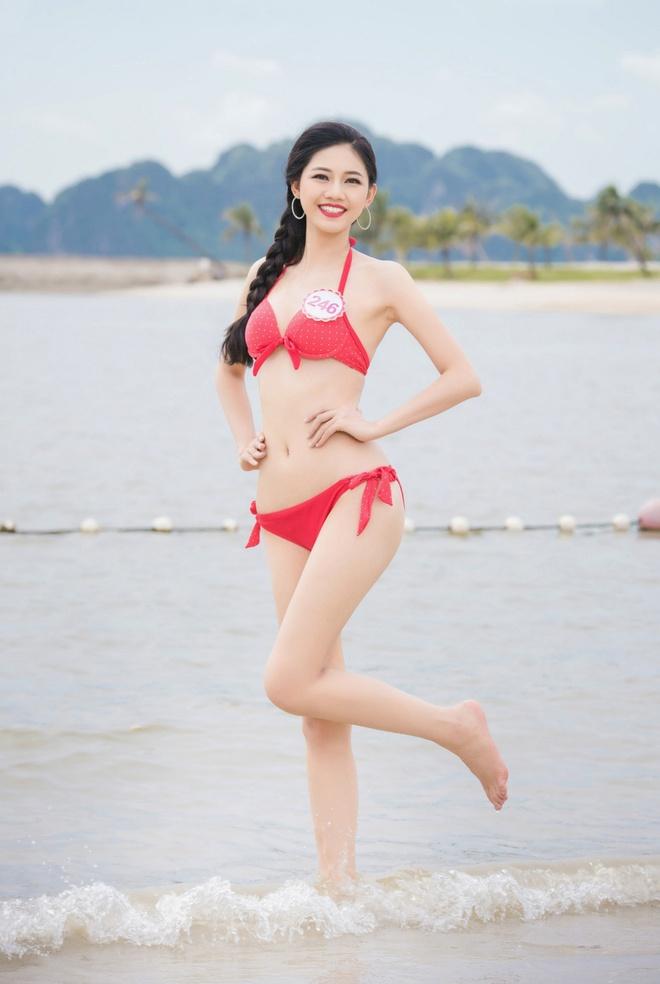 33 thi sinh HHVN khoe duong cong voi bikini anh 5