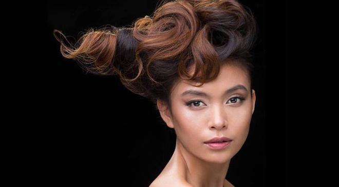Next Top Model 2017 danh cho nguoi mau chuyen nghiep hinh anh