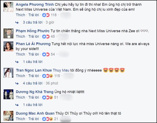 Mau Thanh Thuy xac nhan thi Hoa hau Hoan vu Viet Nam hinh anh 1
