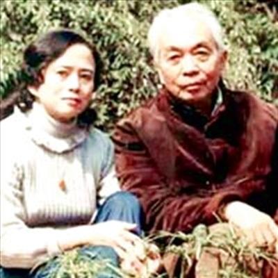 Cuoc chia ly cua Dai tuong Vo Nguyen Giap va nguoi vo dau hinh anh 2