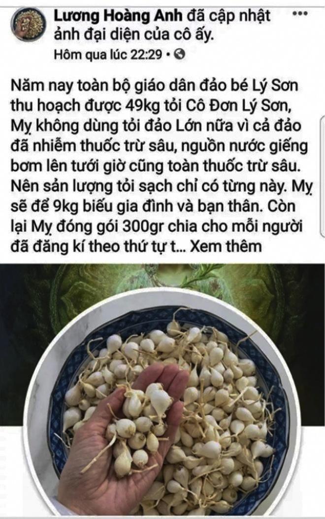 Tài khoản facebook Lương Hoàng Anh tung tin thất thiệt về tỏi Lý Sơn. Ảnh chụp màn hình.