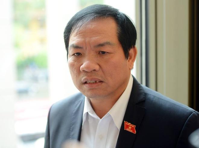 'Dung du an dien hat nhan Ninh Thuan la dung cam' hinh anh 1