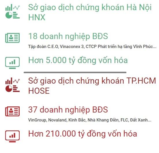 Buc tranh doanh nghiep bat dong san Viet Nam: Nhieu dai gia an minh hinh anh 1