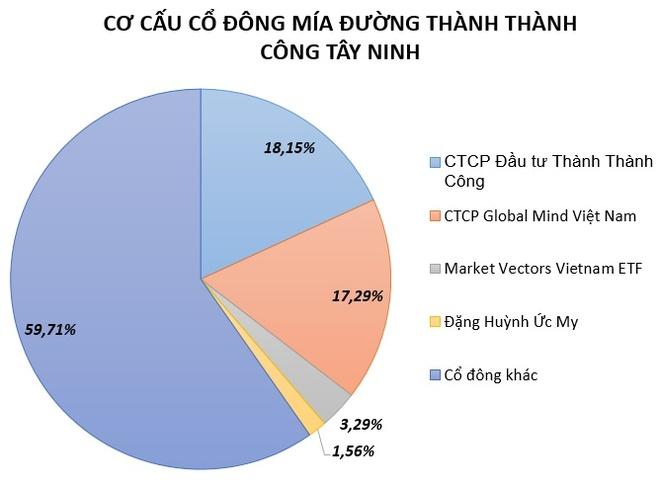 De che ong Dang Van Thanh thau tom cong ty mia duong cua bau Duc hinh anh 1