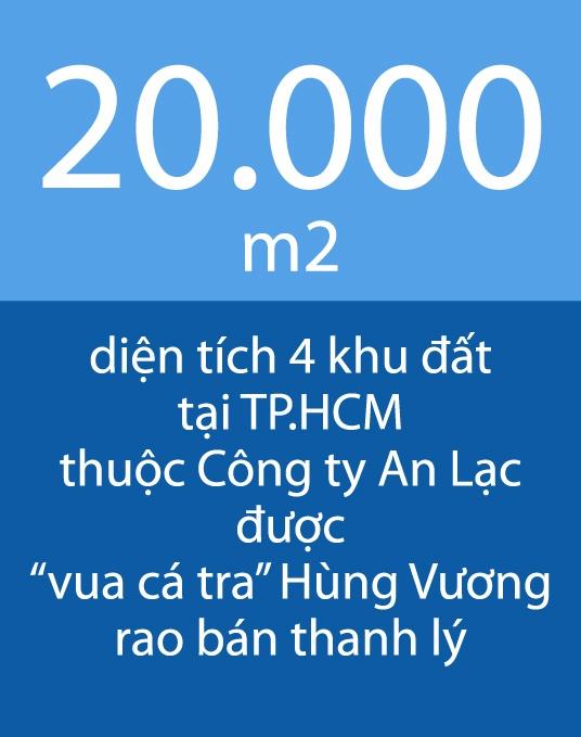 'Vua ca tra' Hung Vuong rao ban thanh ly 20.000 m2 dat tai TP.HCM hinh anh 1