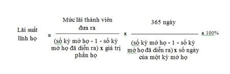 Lai suat 'choi' hui khong duoc vuot qua 20% mot nam hinh anh 1