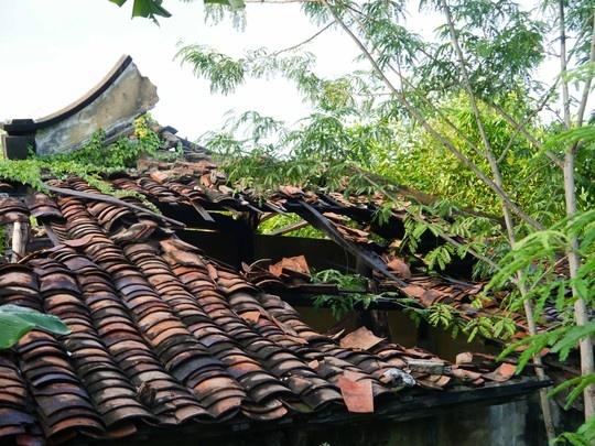 Hon 50 ty dong trung tu chua co 200 tuoi o Sai Gon hinh anh 2 Mái ngói âm dương của ngôi chùa cổ gần như đã hư hỏng hoàn toàn.