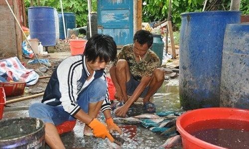 Trung Quoc chieu du nguoi dan sinh song trai phep o Hoang Sa hinh anh 1 Ngư dân Trung Quốc sinh sống trái phép trên đảo Phú Lâm. Ảnh: ESCN