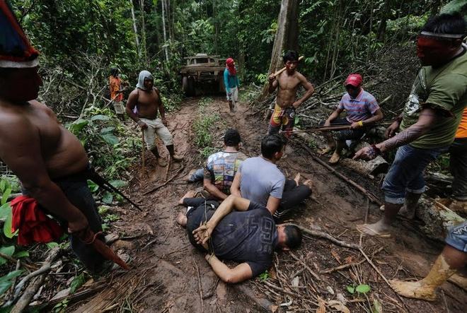 Tho dan rung ram Amazon duoi danh lam tac hinh anh 1 Các chiến binh Ka'apor, một bộ lạc bản địa Brazil, sinh sống ở khu vực phía đông bắc của rừng nhiệt đới Amazon cảm thấy họ cần phải hành động để dẹp nạn lâm tặc đang hoành hành tại đây. Theo họ, vây bắt lâm tặc là cách đáp trả thái độ thờ ơ của chính phủ trong việc ngăn chặn nạn khai thác gỗ trái phép.