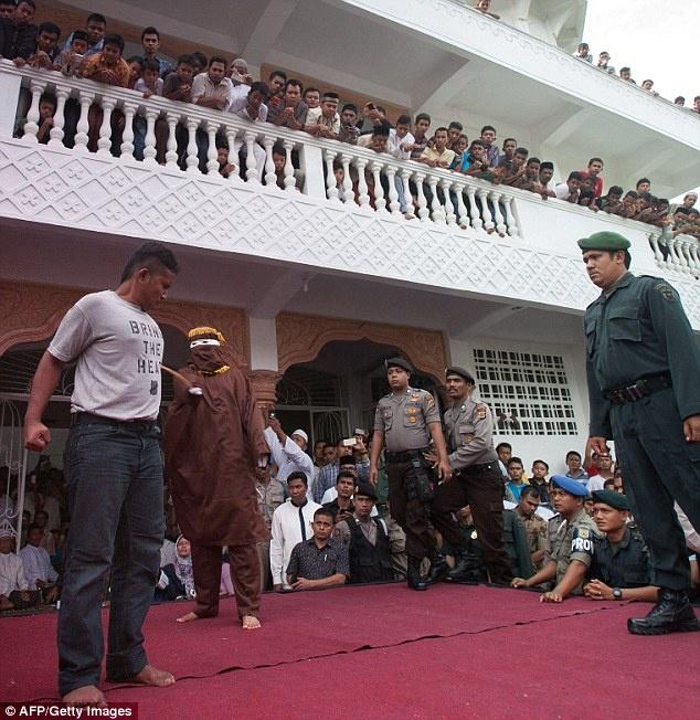Con bac dau don chiu don roi o Indonesia hinh anh