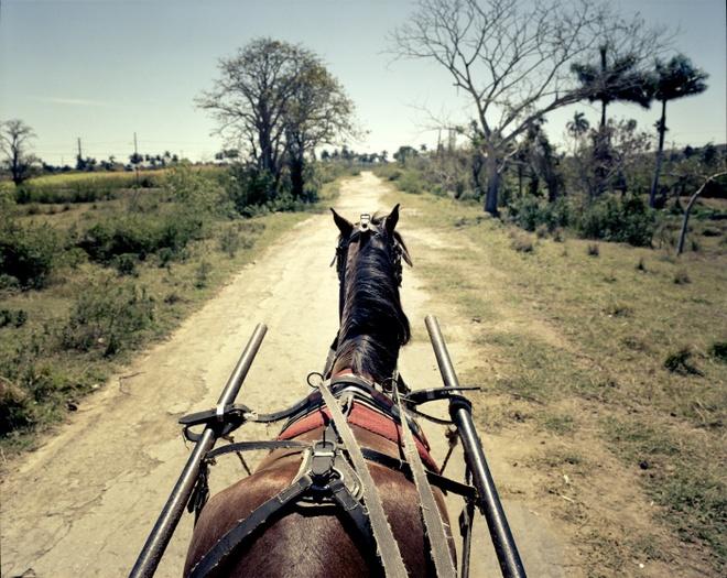 Cuoc song doi thuong o Cuba khi bi My cam van hinh anh 17 Xe ngựa là phương tiện vận chuyển chủ yếu khi người dân muốn đi đến các vùng quê ở Cuba.