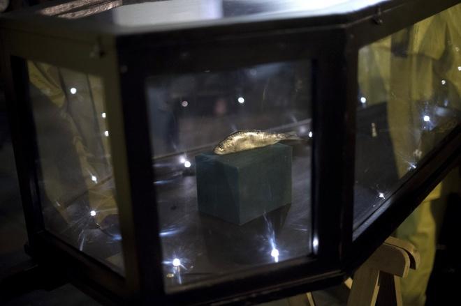 Nguoi Viet cho do cong kenh vao top anh ky thu nhat nam 2014 hinh anh 4 Đám tang của một chú cá sardine diễn ra tại thành phố cảng Basque, Tây Ban Nha, vào ngày 5/3/2014. Ảnh: Reuters