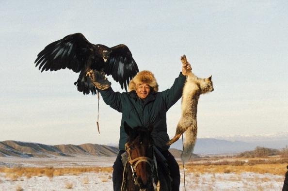 Mot ngay di san cung dai bang tren cao nguyen hinh anh 7 Người Kazakhstan không nuôi nhốt đại bàng, mà họ bắt đầu nuôi chúng từ khi mới ra đời. Những thợ săn thường chọn một con đại bàng cái để đồng hành trong các chuyến đi vì kích thước lớn của chúng.