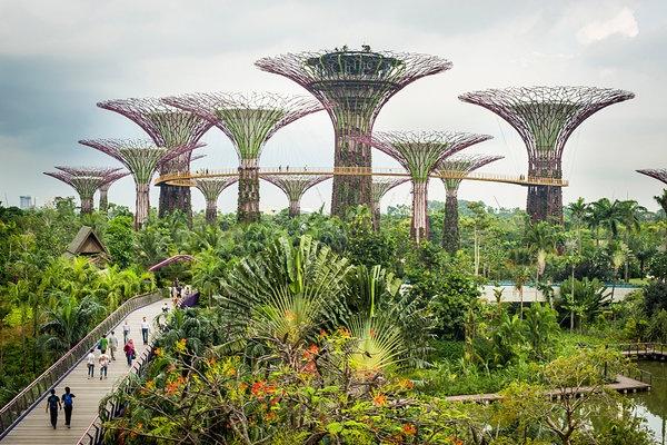 Tam nhin phu xanh Singapore cua ong Ly Quang Dieu hinh anh