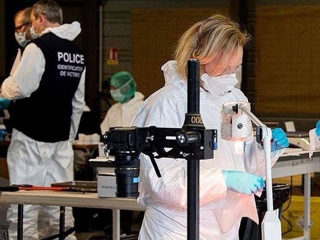 Xac dinh duoc ADN cua 80 nan nhan may bay Duc hinh anh 2 Chuyên gia pháp y tiến hành nhận dạng ADN của nạn nhân chuyến bay 4U9525 rơi tại Pháp.