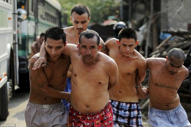 Canh ap giai pham nhan den nha tu nguy hiem nhat the gioi hinh anh 6 Tuần trước, 8 thành viên của một băng đảng tội phạm bỏ mạng khi đối mặt với cảnh sát tại một vườn trồng cà phê.