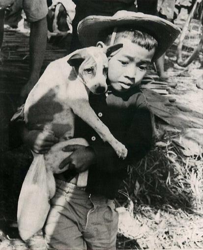 Tre em trong chien tranh Viet Nam qua anh quoc te hinh anh 7 Bé trai ôm chó theo chuyến di tán. Ảnh chụp ngày 16/1/1967.