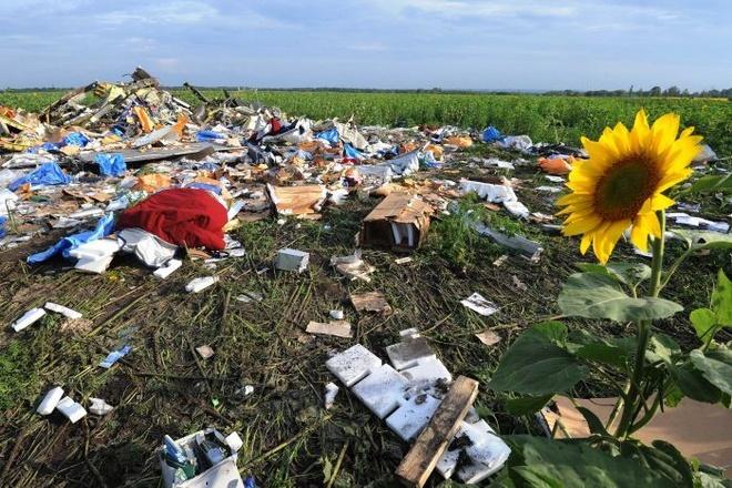 Mot nam sau tham kich MH17: Ngay khong the quen hinh anh