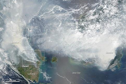 Khoi mu nam nay co the nghiem trong nhat lich su hinh anh 1 Khói mù bao phủ phần lớn diện tích Đông Nam Á nhìn từ ảnh vệ tinh NASA. Ảnh: NASA
