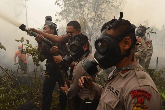 Khoi mu nam nay co the nghiem trong nhat lich su hinh anh 6 Cảnh sát và lính cứu hỏa Indonesia dập tắt một đám cháy trên Central Kalimantan province on Borneo