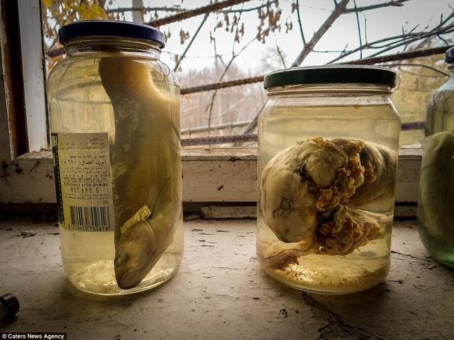 tham hoa hat nhan Chernobyl anh 12