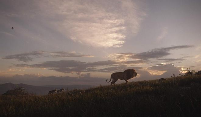 'The Lion King' nhan mua loi khen khi chieu ra mat tai My hinh anh 1