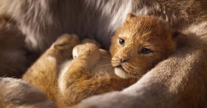 'The Lion King' nhan mua loi khen khi chieu ra mat tai My hinh anh 3