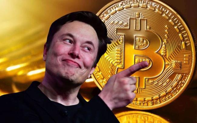 Duoc Elon Musk tiep nhiet, gia Bitcoin co the tang den dau? hinh anh