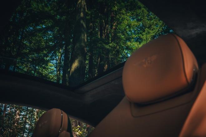 Bentley Continental GT co toi 10 ty kieu phoi mau ngoai that anh 3