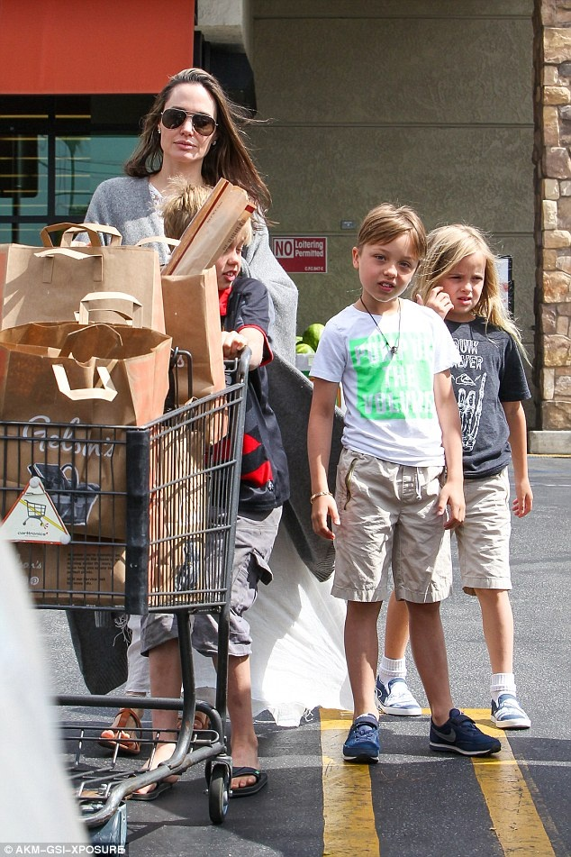 Angelina Jolie va Brad Pitt ben nhau giua tin don ly hon hinh anh 3
