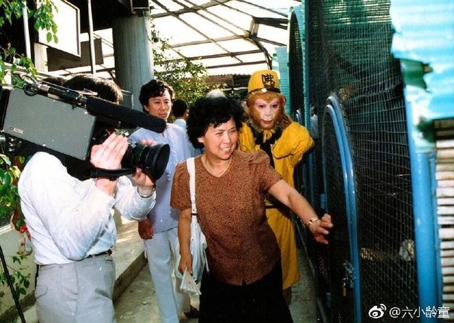 Dan sao thuong tiec khi biet tin dao dien 'Tay Du Ky' 1986 qua doi hinh anh 1