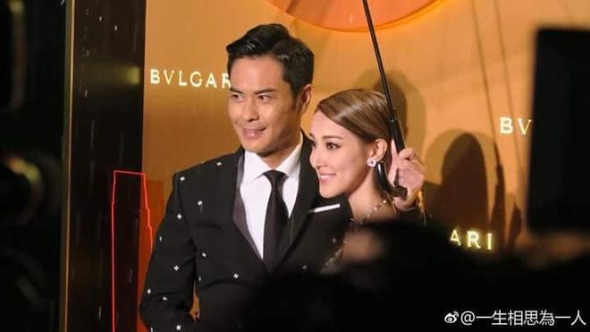 Tran Khai Lam va Trinh Gia Dinh den Viet Nam anh 1