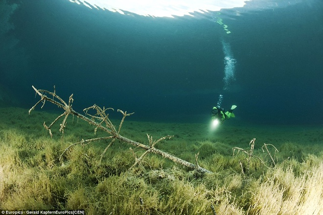 Ngam cong vien bien thanh ho nuoc khi tuyet tan hinh anh 3 Các bức ảnh của Kapfer và Hois cho người xem thấy cảnh một công viên vào mùa hè biến thành một hồ nước vào mùa xuân.