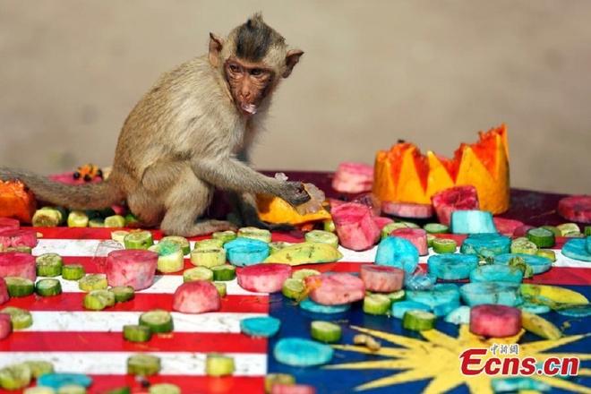 Dai tiec buffet cua khi o Thai Lan hinh anh 2 Đây là lễ hội thường niên diễn ra vào ngày Chủ nhật cuối cùng của tháng 11 nhằm thu hút khách du lịch.