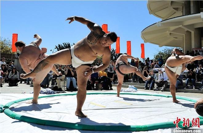 Cuoc song cua cac vo si sumo Nhat Ban hinh anh 13 h