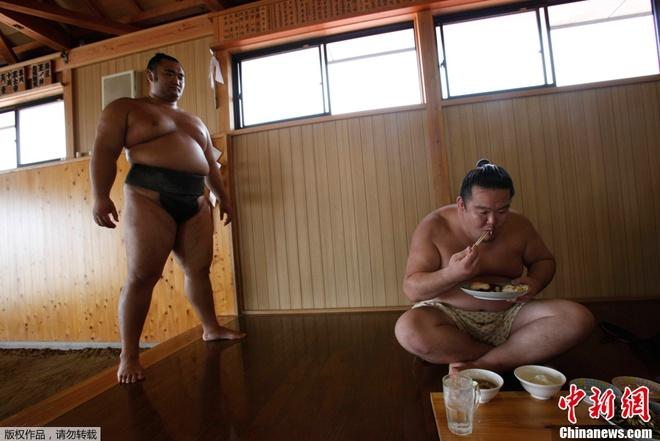 Cuoc song cua cac vo si sumo Nhat Ban hinh anh 3 u
