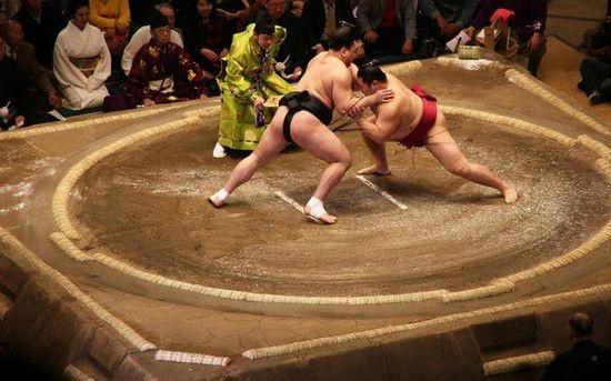 Cuoc song cua cac vo si sumo Nhat Ban hinh anh 9 k