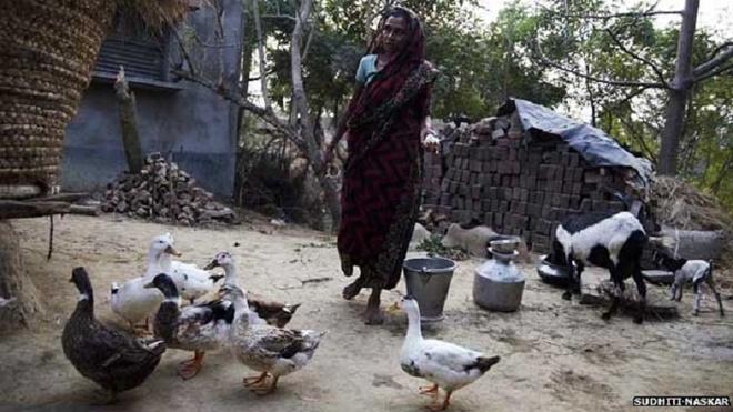 Dang sau su im lang cua nan nhan hiep dam o An Do hinh anh 1 Huyện Murshidabad là vùng nông thôn điển hình ở Ấn Độ. Ảnh: Sudhiti Naskar