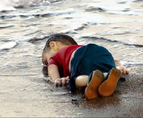 Hanh trinh cuoi cung cua cau be Syria hinh anh