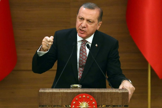 My keu goi ho tro chinh phu Tong thong Erdogan hinh anh