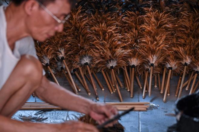 AFP: Cuoc chien ton tai khoc liet cua choi long ga Viet hinh anh