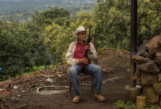 Bao luc ma tuy o Mexico: Khi dan tu chu de bao ve 'vang xanh' hinh anh