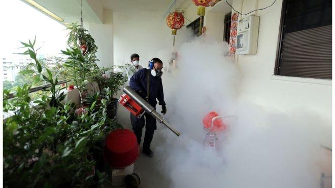 Singapore phat hien thai phu dau tien nhiem virus Zika hinh anh