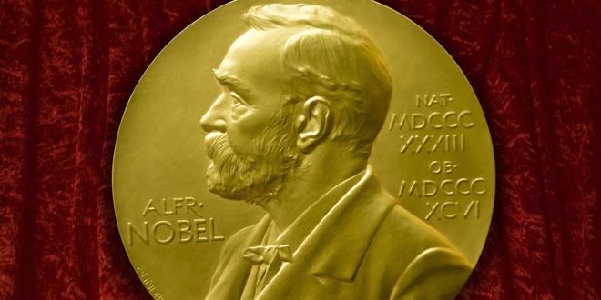 Nhung ung vien sang gia cua mua giai Nobel 2016 hinh anh